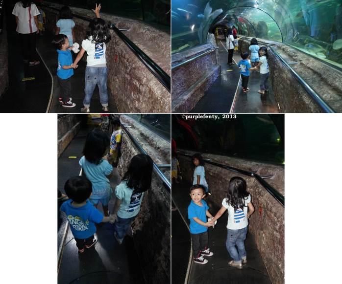 Sea World 3